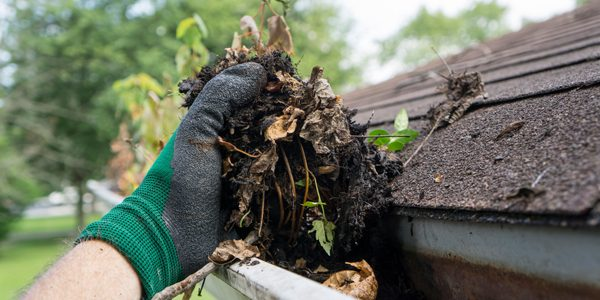 YOUR GUIDE TO BETTER GUTTER CARE